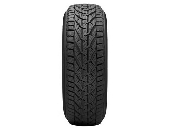 Spoljna guma 195/65 R15 95T XL WINTER TG *0000324*