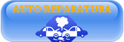 Auto reparatura